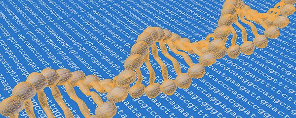 big data human genome